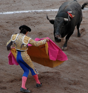 Bullfight at San Marcos Fair