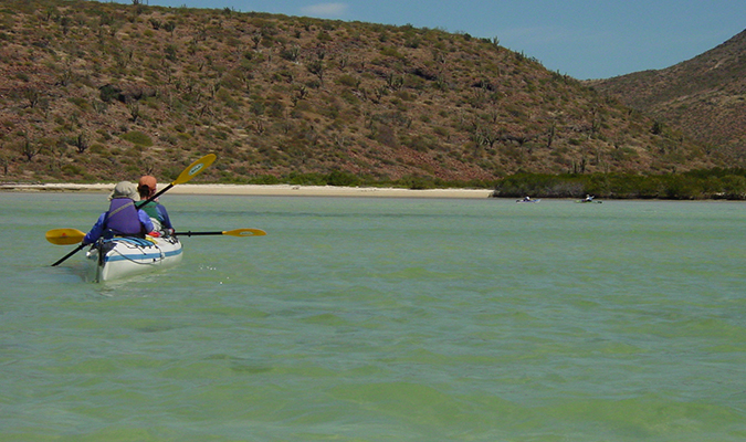 Baja Marine Adventure Kayaking