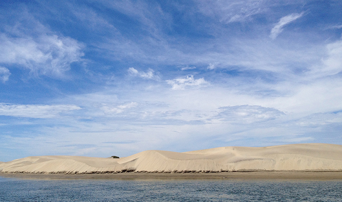 Baja Magdalena Bay