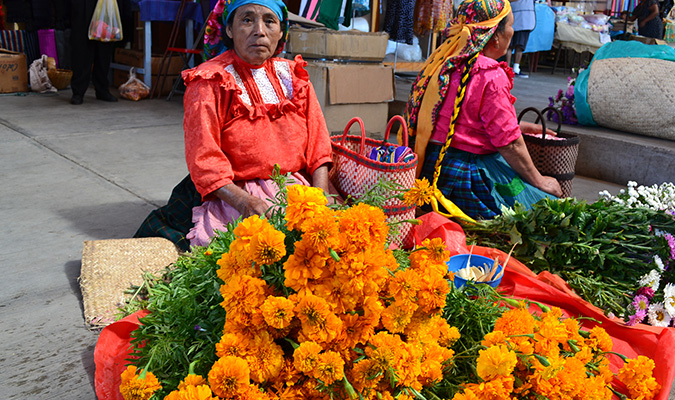 Culture Oaxaca Market Lady