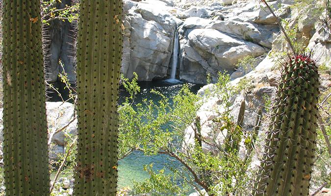 Baja Sierra Laguna Nature