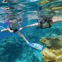 riviera-maya-snorkel