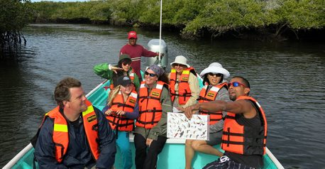 mangrove-birdwatching-red-baja