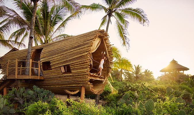 Playa Viva, Eco-Hotel in Guerrero - Kevin Steele